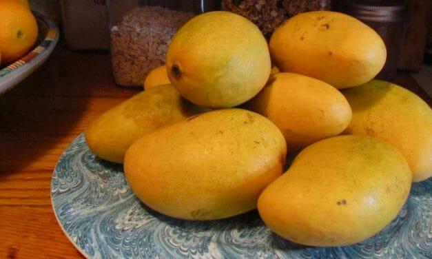 Ensalada de Quinoa con Mangos