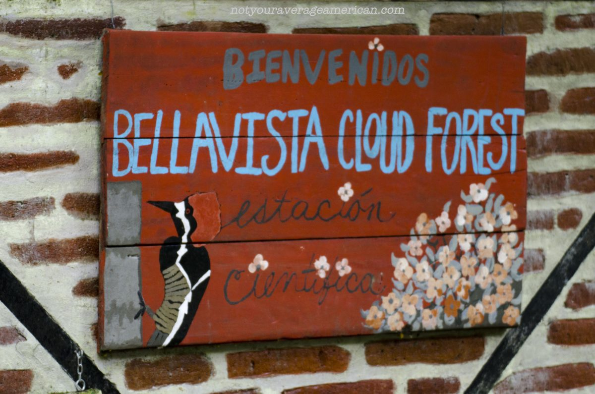 The Bellavista Research Station – Not Only For Scientists
