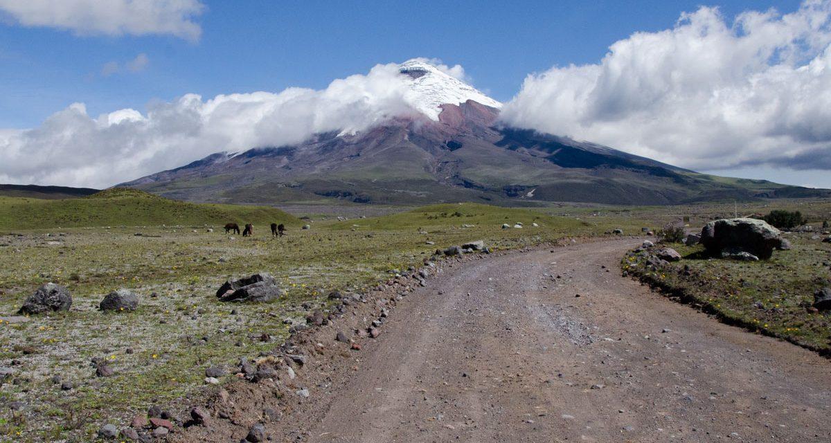 Tour Cotopaxi Como Un Guía Local