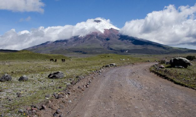 Tour Cotopaxi Como Un Guía Local