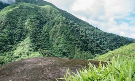The Spiral Petroglyphs of Guizhaguiña, Ecuador
