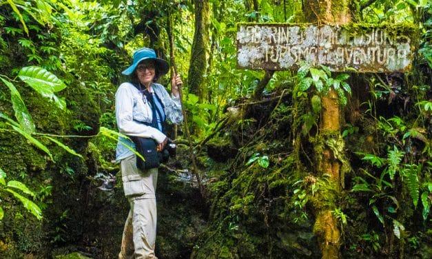 Coronavirus Ha Invertido El Turismo