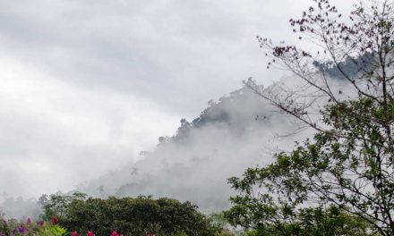 What You Need To Know About Mindo, Ecuador