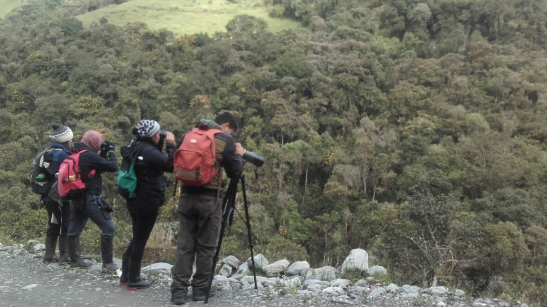 El Conteo Mundial 2020 en Parque Nacional Llanagantes