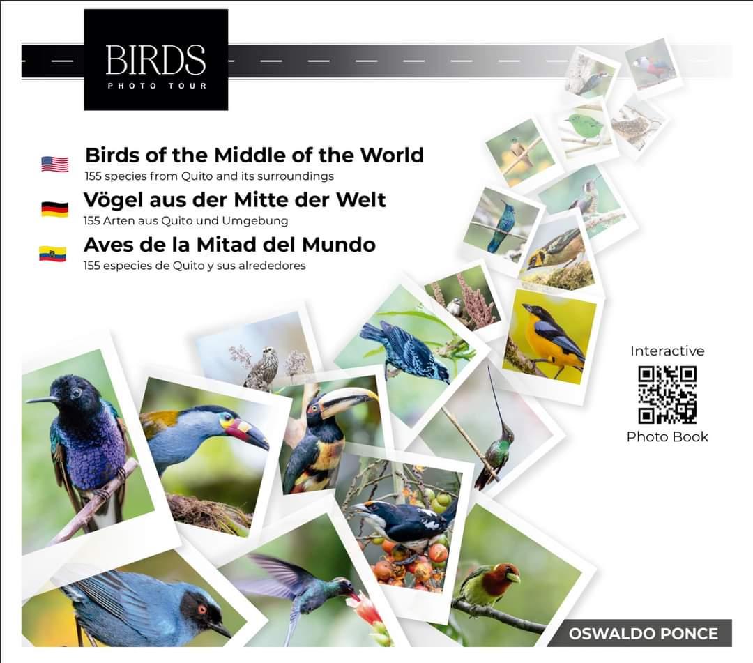 Aves de la Mitad del Mundo| ©Oswaldo Ponce